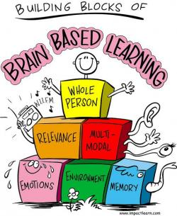 Brains clipart student learning