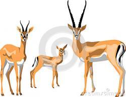 Gazelle clipart cute