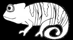 Cameleon clipart desert animal