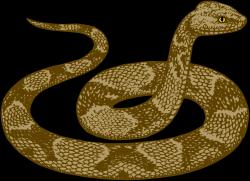 Boa Constrictor clipart desert snake