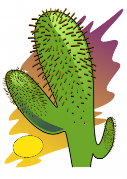 In The Desert clipart different kind plant