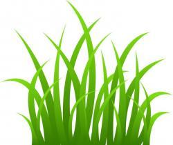 Blade clipart marsh grass
