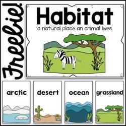 In The Desert clipart ocean habitat