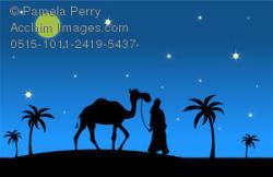 Night Sky clipart desert camel