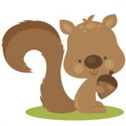 Cattle clipart brown squirrel