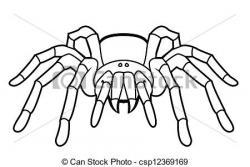 Tarantula clipart drawing