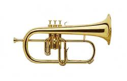 Brass clipart cornet
