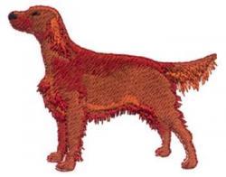 Red Setter clipart