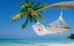 Islet clipart beach scenery
