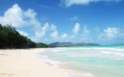 Island clipart beach shore