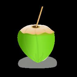 Coconut clipart icon