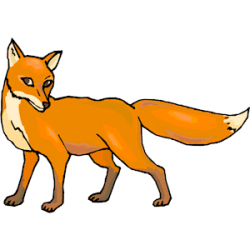 Red Fox clipart jackal