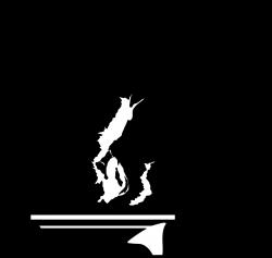 Bonsai clipart black and white