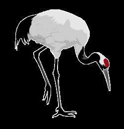 Japanese Crane clipart