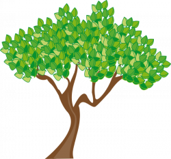 Japanese Garden clipart summer tree
