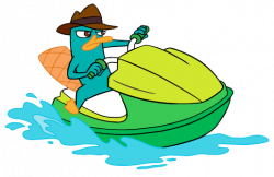 Platypus clipart perry