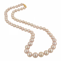 Necklace clipart pearl strand