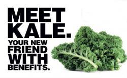 Kale clipart vegtable