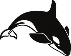 Orca clipart sea animal