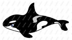 Orca clipart cartoon