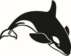 Orca clipart sea creature