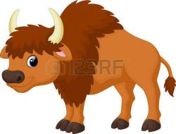 Bison clipart cute