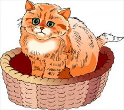 KITTENS clipart cat basket