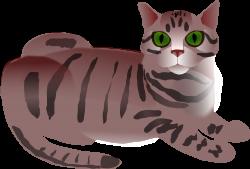 Tabby Cat clipart cute