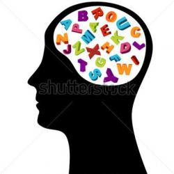 Knowledge clipart brain thinking
