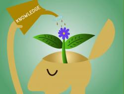 Knowledge clipart healthy mind