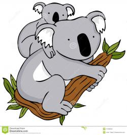 Aboriginal clipart koala
