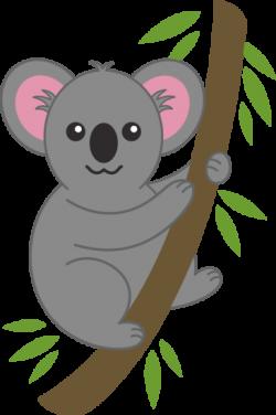 Eucalyptus clipart baby koala