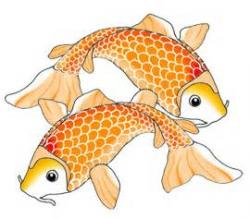 Koi Fish clipart spotted
