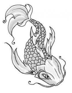 Drawn koi ikan