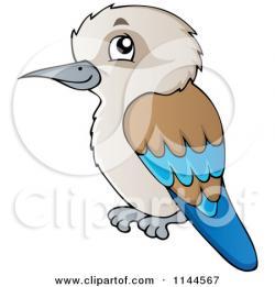 Kookaburra clipart bird