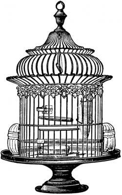 Birdcage clipart round