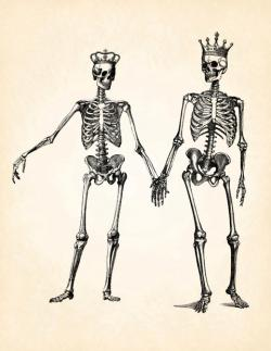 Kopel clipart skeleton