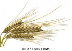 Grains clipart vector