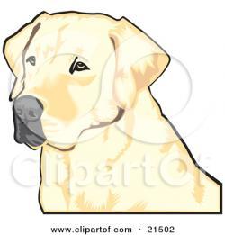 Labrador Retriever clipart chocolate lab