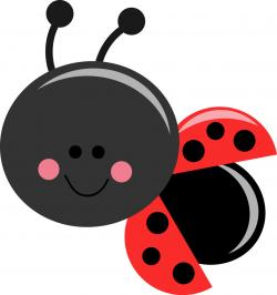 Wallpaper clipart ladybug