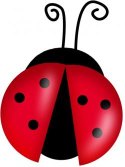 Lady Beetle clipart animated
