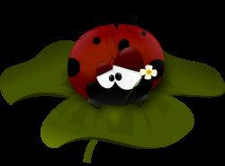 Ladybug clipart clover