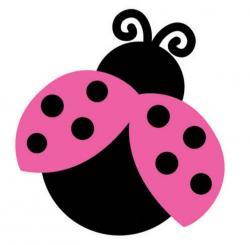 Lady Beetle clipart pink ladybug