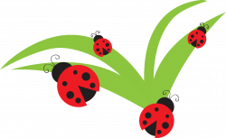 Lady Beetle clipart september flower
