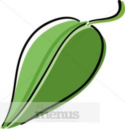 Basil clipart flower leaves