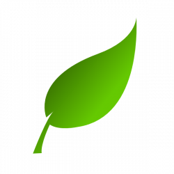 Basil clipart greens