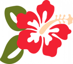 Leaves clipart hibiscus flower