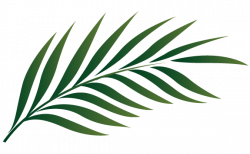 Leaves clipart palm sunday