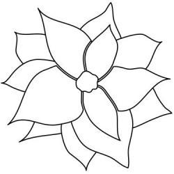 Poinsettia clipart simple