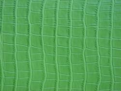 Leather Textures clipart lizard